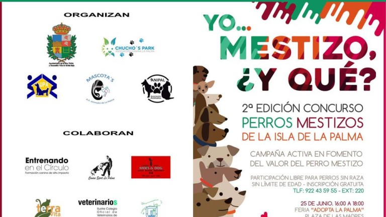 Cartel de la adopción de animales en Breña Baja