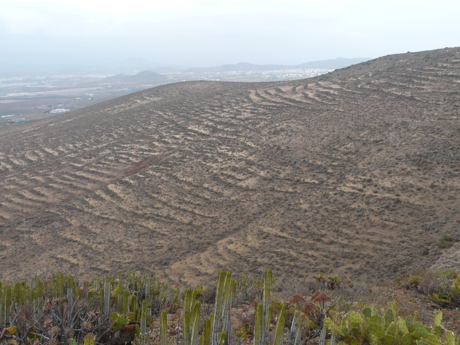 Zona desertizada en Canarias