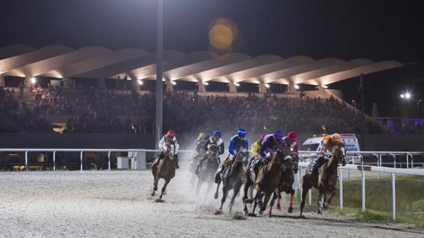 Caballos en una carrera nocturna en el hipódromo de la Zarzuela de Madrid