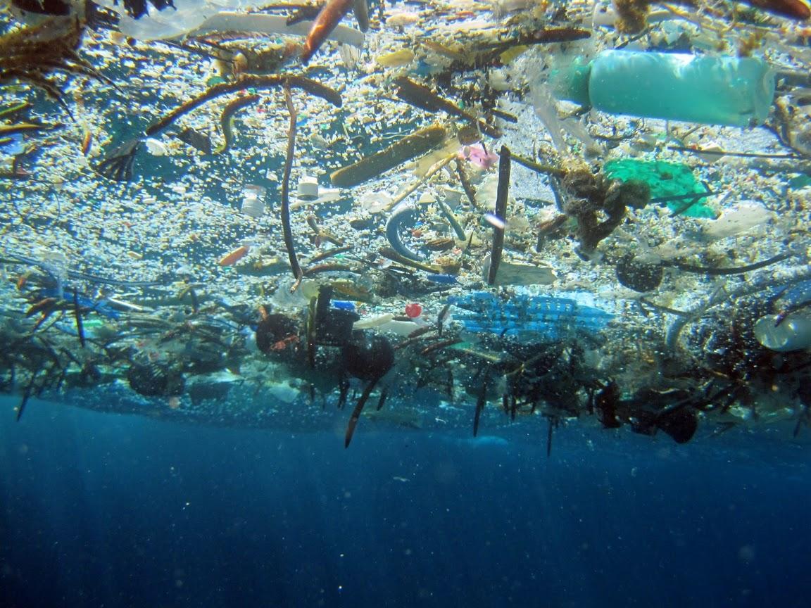 Plásticos flotando en el mar