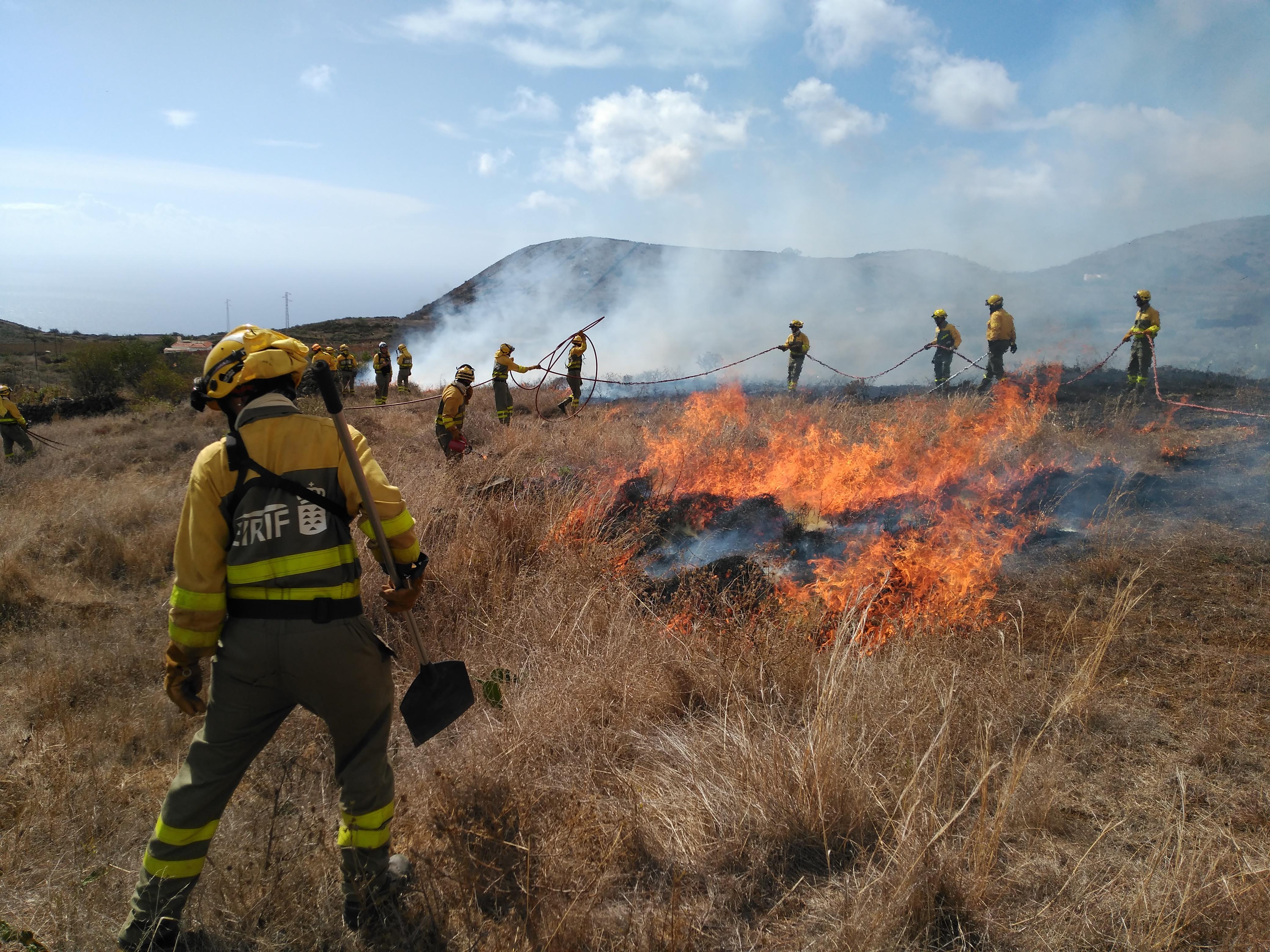 Quemas prescritas para la prevención de incendios forestales en El Hierro