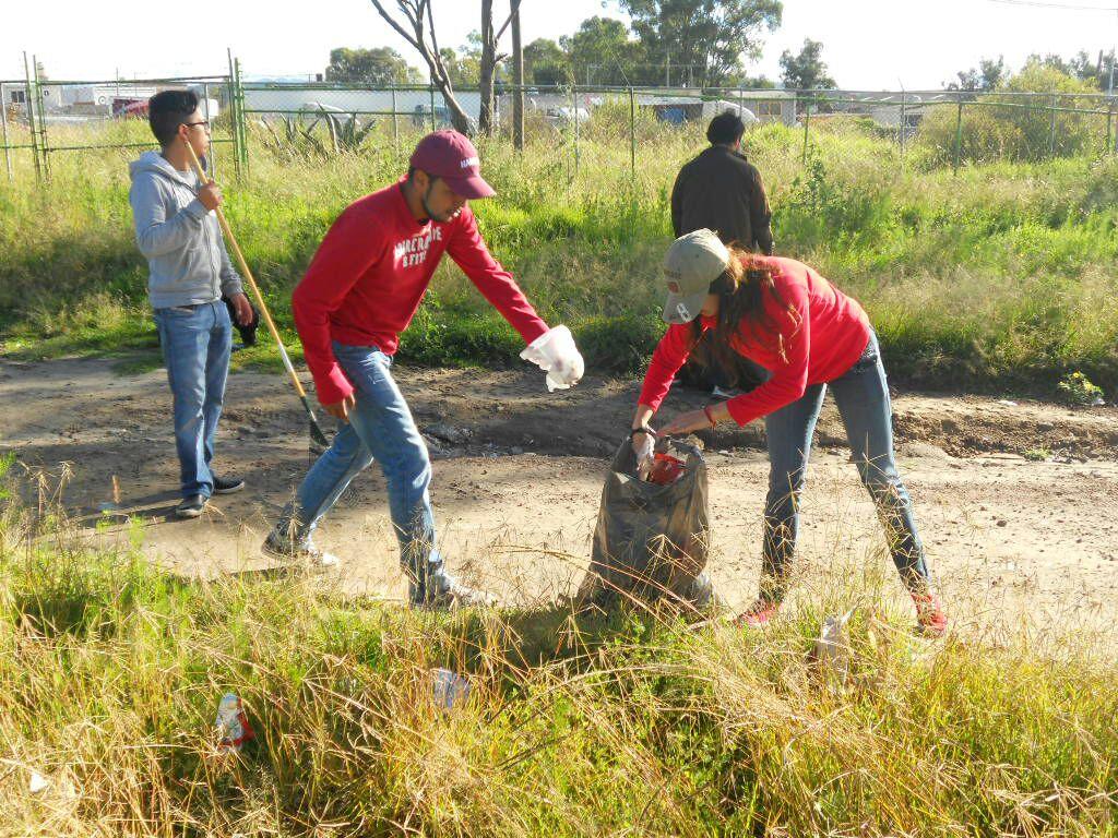 Educación fomentará los servicios a la comunidad entre los estudiantes canarios