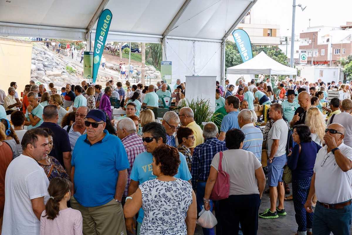 La 3ª Feria del Aguacate de Invierno de Mogán vende más de 5.300 kilos de ejemplares