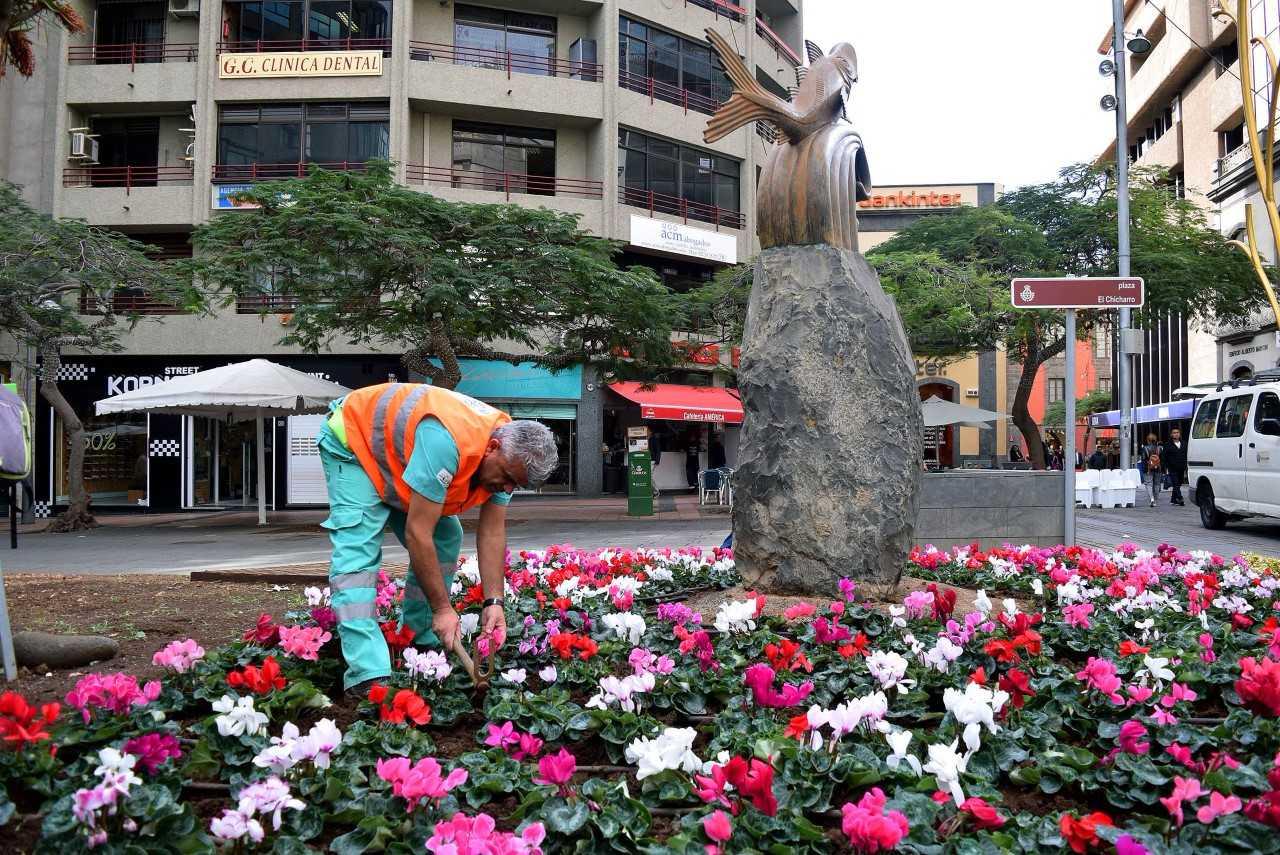 Los jardines de Santa Cruz se renuevan con la plantación de 50.000 flores de temporada