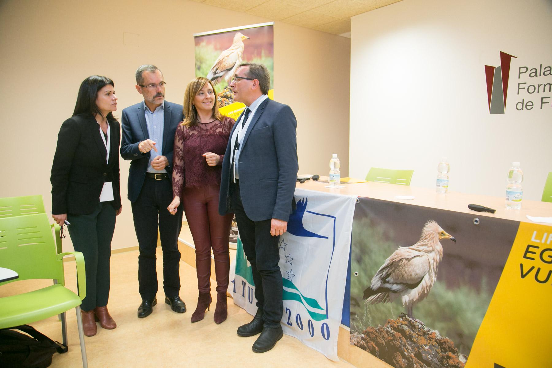 Política Territorial presenta el proyecto europeo Life Egyptian Vulture para la protección del guirre en Canarias