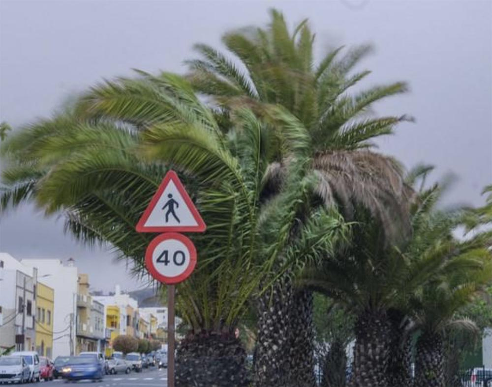 El ayuntamiento de las palmas de gran canaria activa la - Casa activa las palmas ...