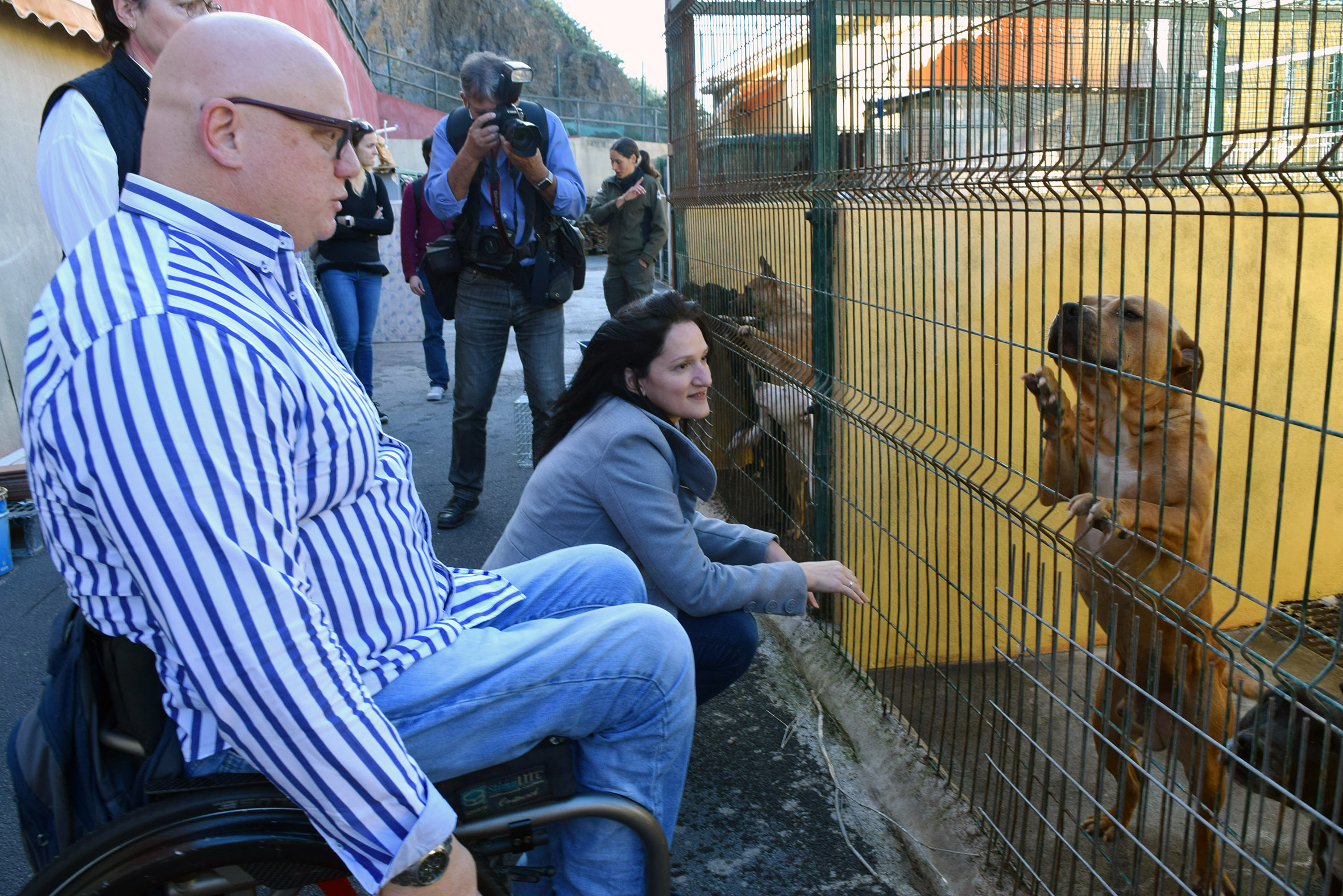 Santa Cruz De Tenerife Reafirma Su Compromiso Con El Albergue De Animales De Valle Colino Canarias Noticias