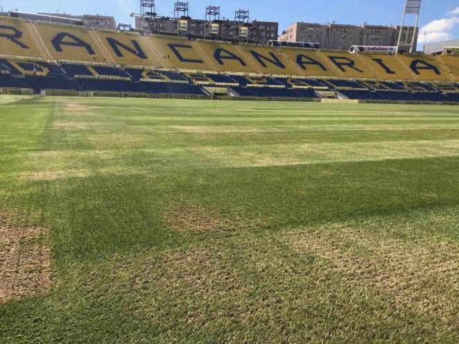 Se inicia la puesta a punto del césped del Estadio de Gran Canaria