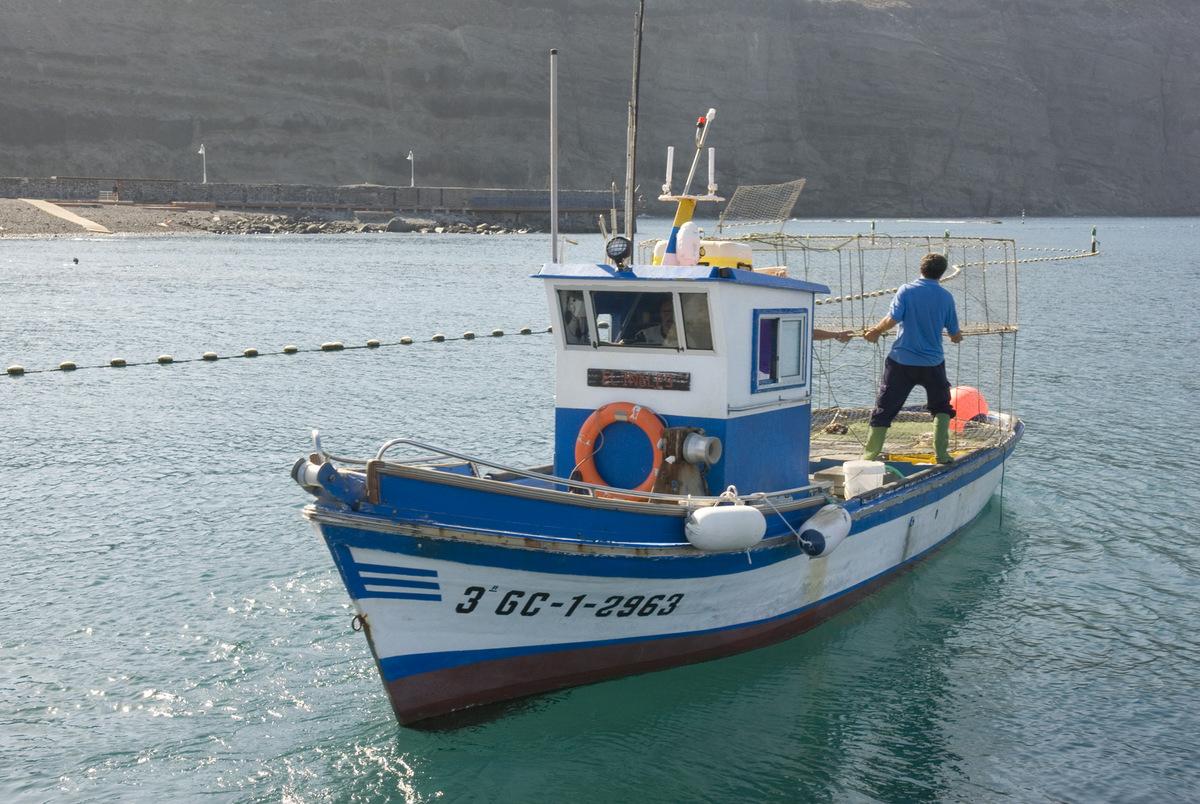 La pesca y la acuicultura de Canarias se acogen a subvenciones por valor de 4,5 millones