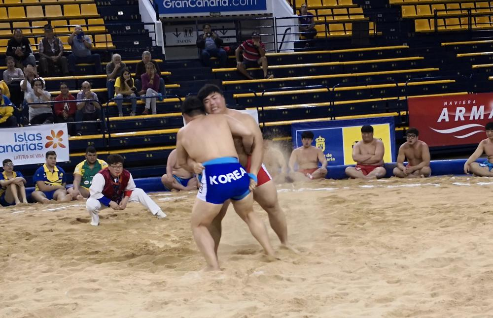 El Mundial de Lucha Canaria tuvo el miércoles su apertura, con el desfile de luchadores participantes en las modalidades de Lucha Leonesa, Lucha Canaria y Lucha Ssyrum