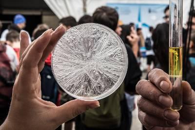 Cinco millones de usuarios siguen la ciencia y la innovación que se hace en Canarias