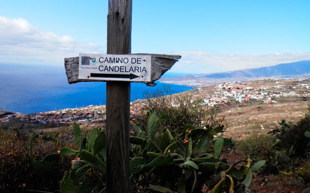 Atropella a tres personas que peregrinaban a Candelaria y se da a la fuga
