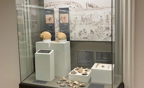 Economía en la arqueología de Gran Canaria, nueva visita nocturna al Museo Canario