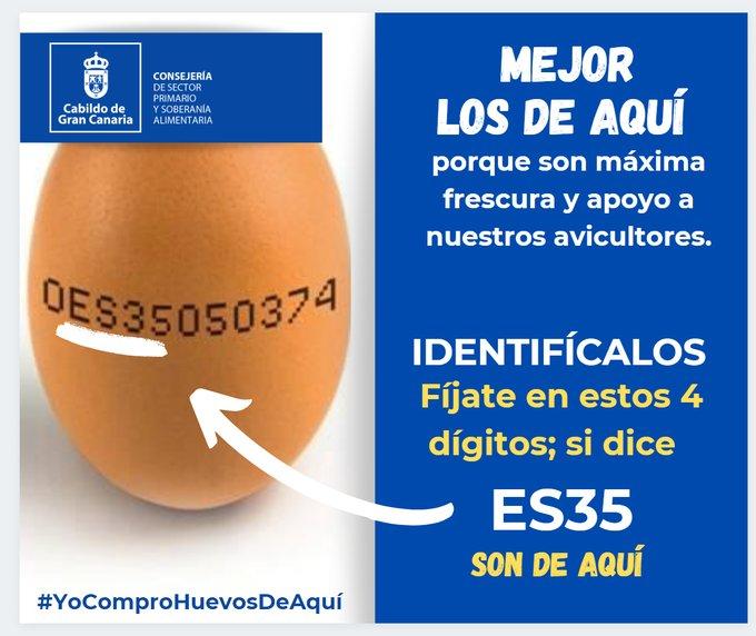 El Cabildo de Gran Canaria lanza la campaña virtual #YoComproHuevosDeAquí