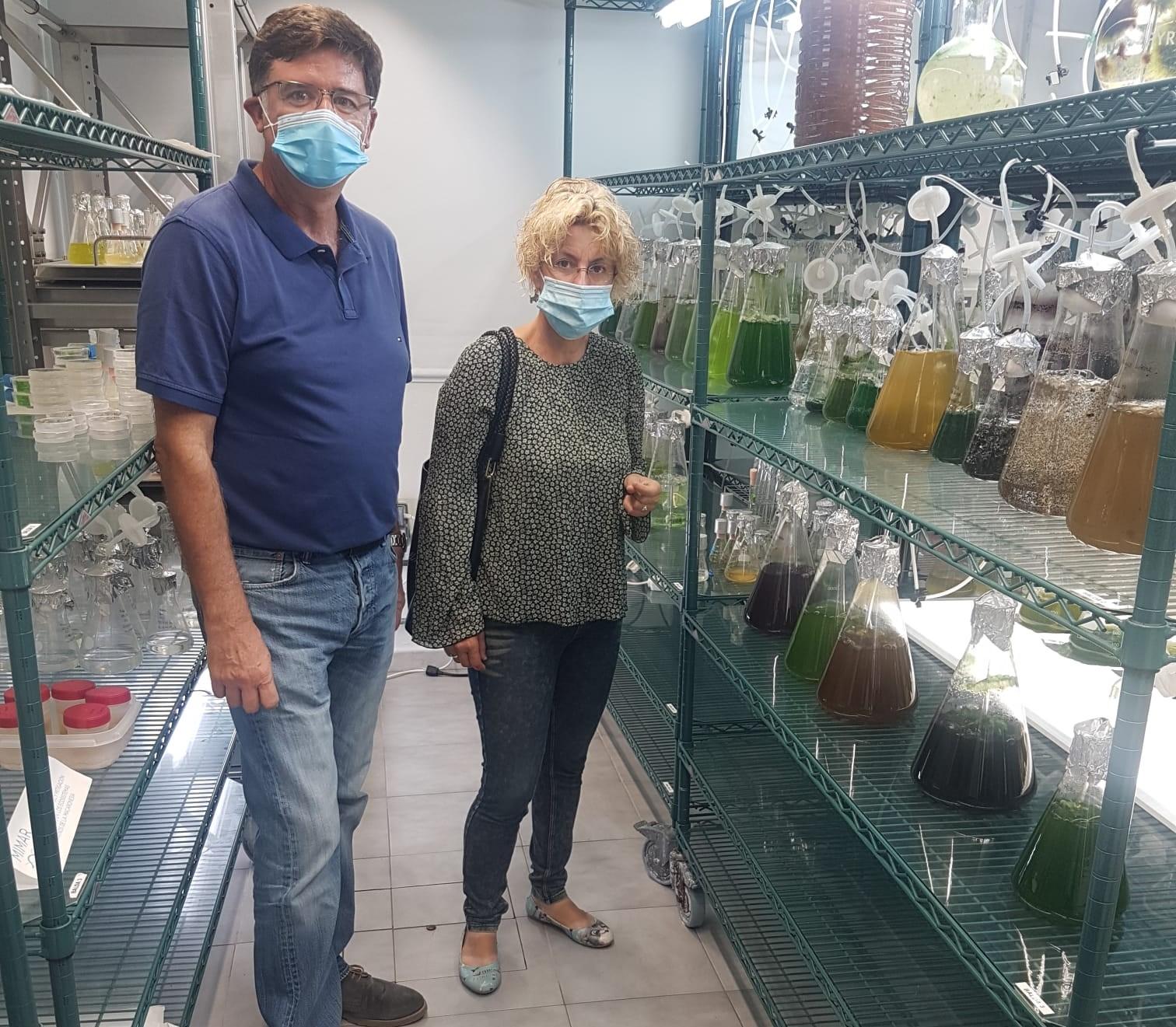 Auri Saavedra en el Banco Español de Algas. Gran Canaria