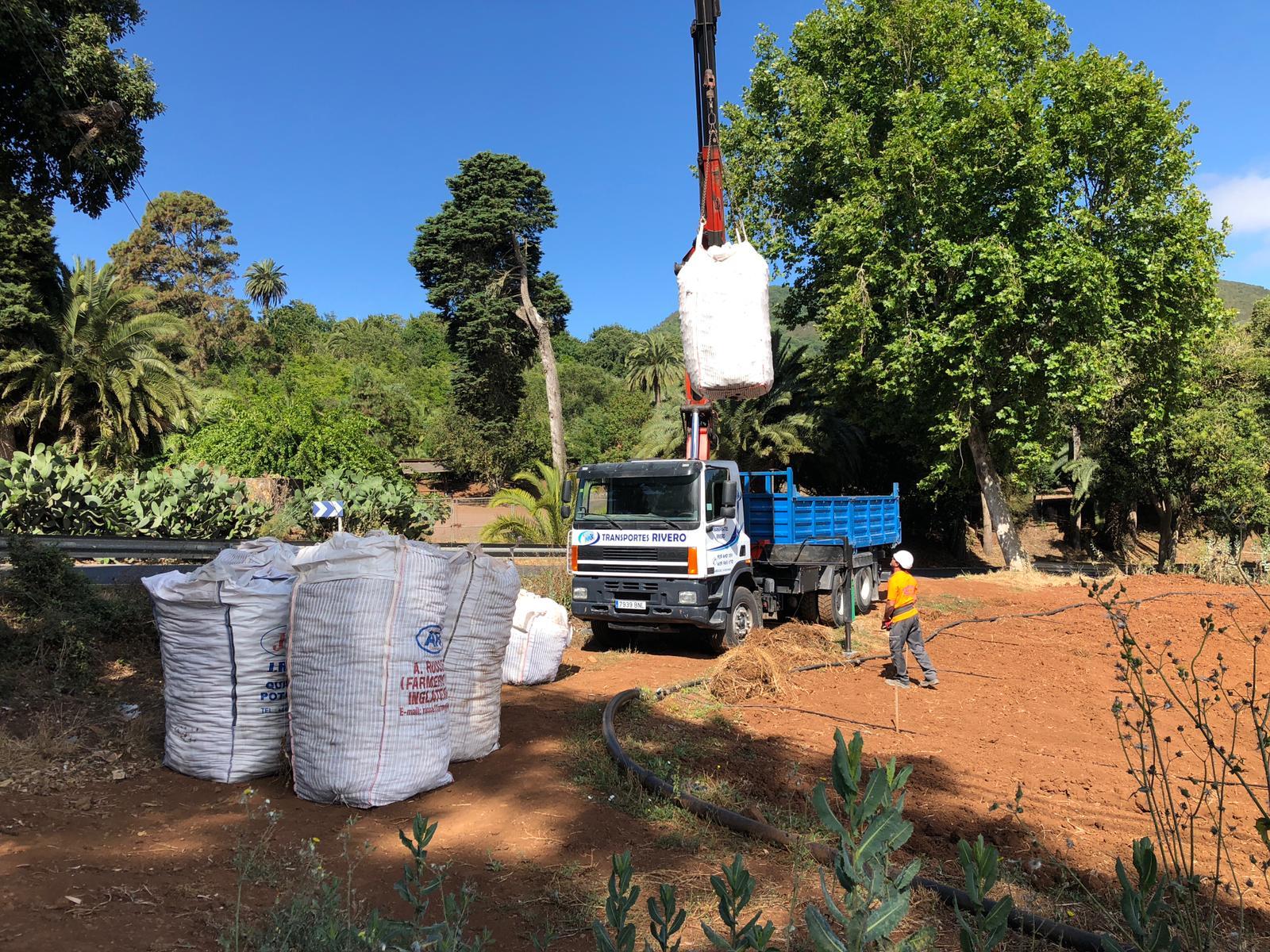 El Cabildo de Gran Canaria abre mañana 1,6 millones en ayudas para la papa, recuperar tierras de cultivo, apoyar al cochino negro y a pequeños productores