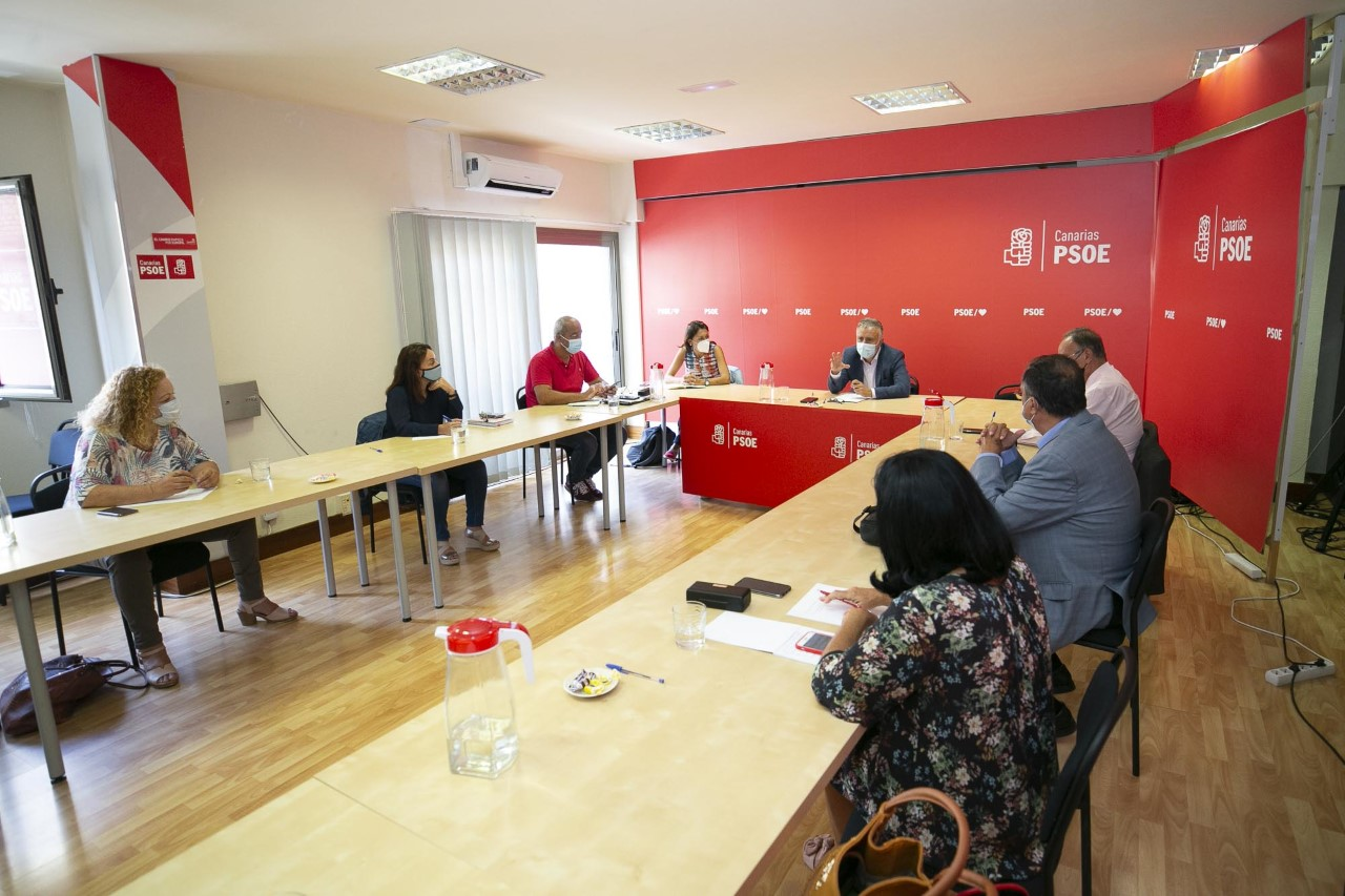 Ángel Víctor Torres y senadores del PSOE
