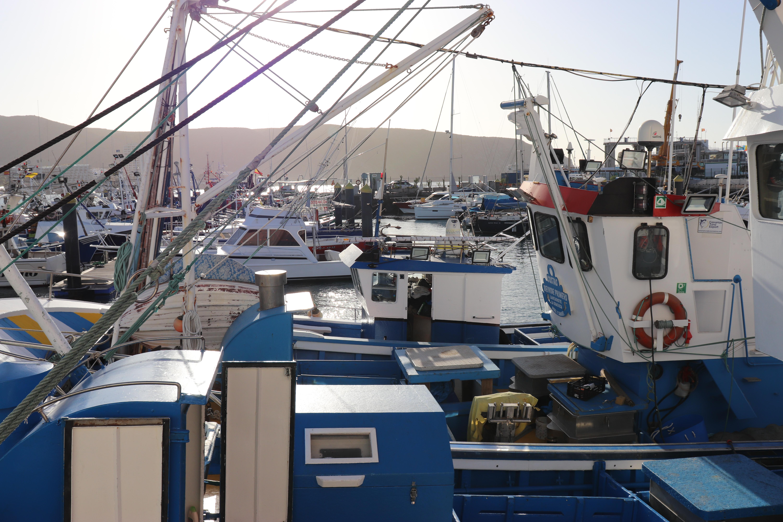 Barcos de pesca en Canarias