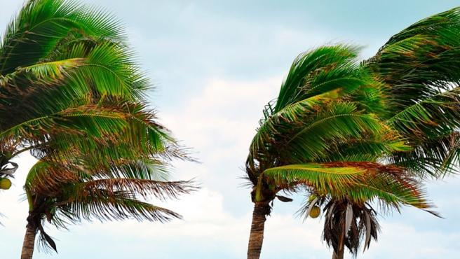 viento en Canarias / CanariasNoticias.es