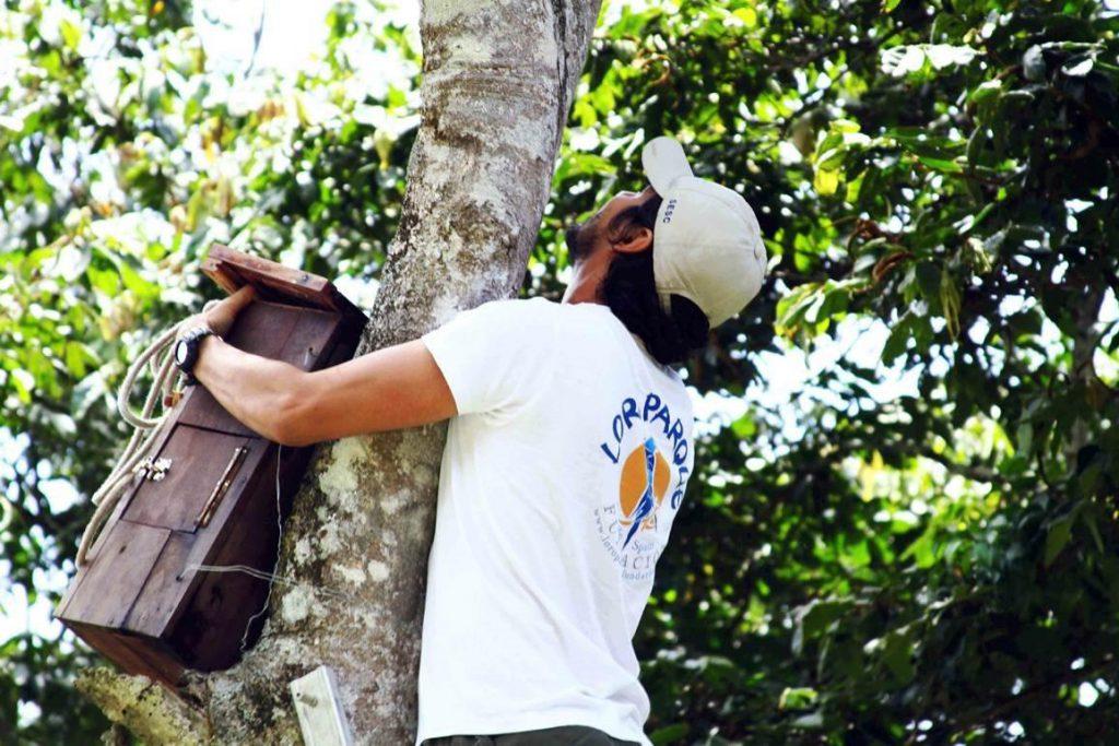 Loro Parque / CanariasNoticias.es