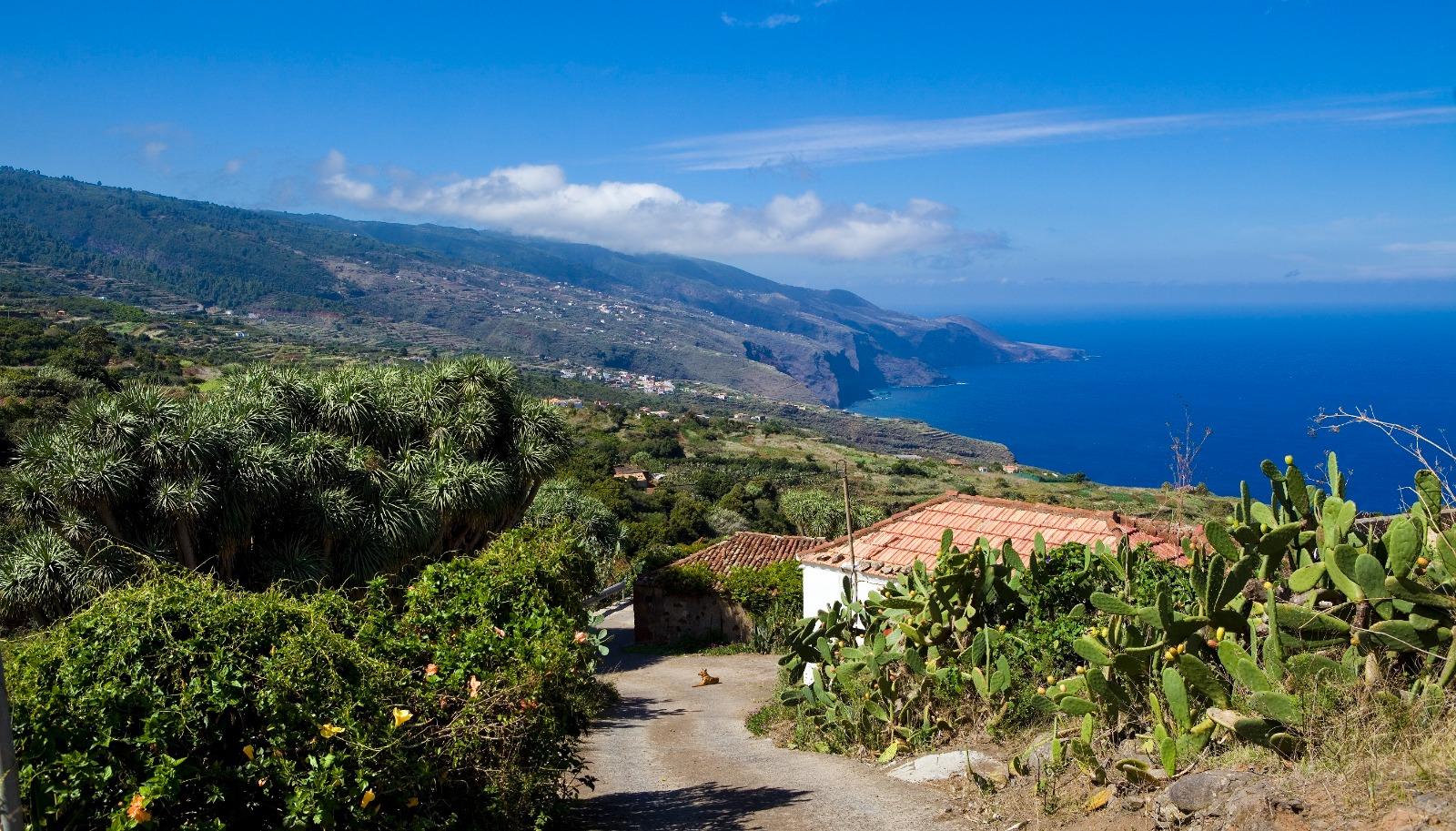 La Palma / CanariasNoticias.es