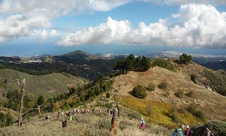 """Ruta de senderismo """"Mesas de Galaz-Las Rosadas"""" de Valleseco (Gran Canaria) / CanariasNoticias.es"""