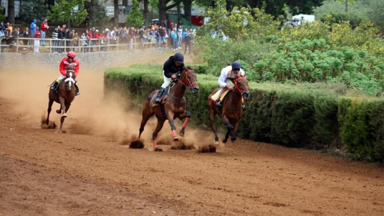 Carreras de Caballos en el hipódromo de la Laguna de Valleseco (Gran Canaria) / CanariasNoticias.es