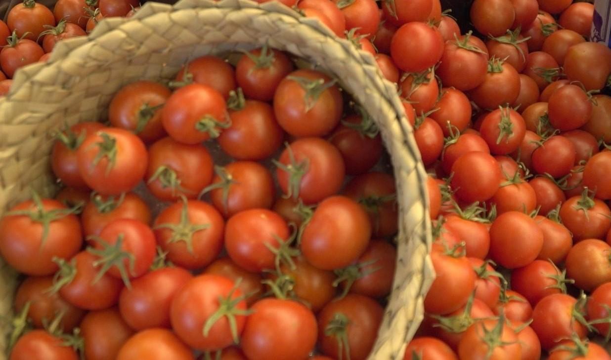 Tomates de Canarias / CanariasNoticias.es