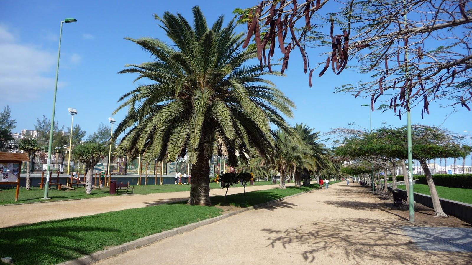 Parque Romano. Las Palmas de Gran Canaria/ canariasnoticias