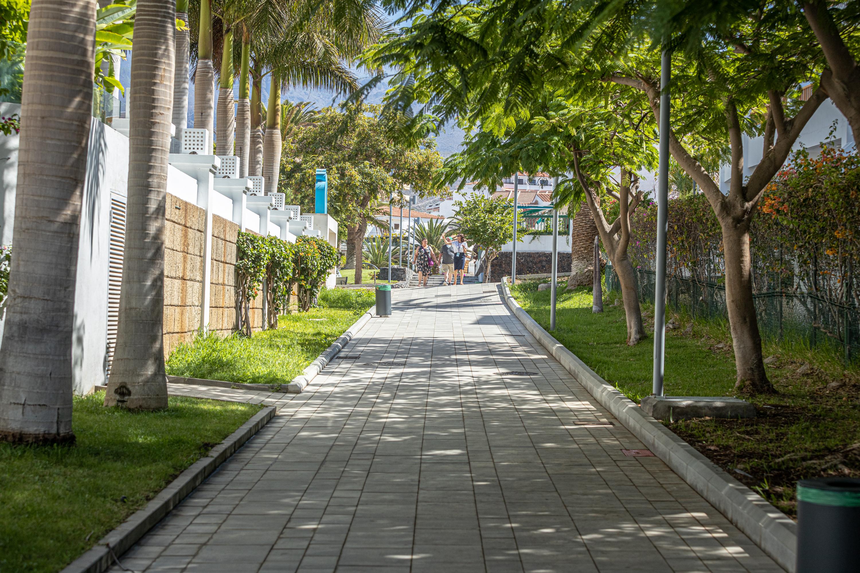 Visita a los paseos peatonales de Costa Adeje (Tenerife) / CanariasNoticias.es