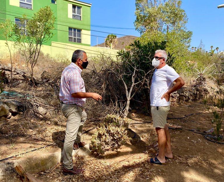 Telde embellece zonas verdes del barrio de Piletillas / CanariasNoticias.es