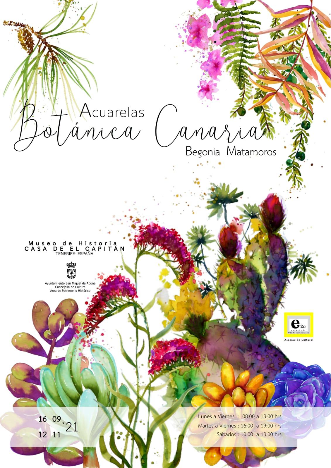 Fiestas Patronales. San Miguel de Abona/ canariasnoticias