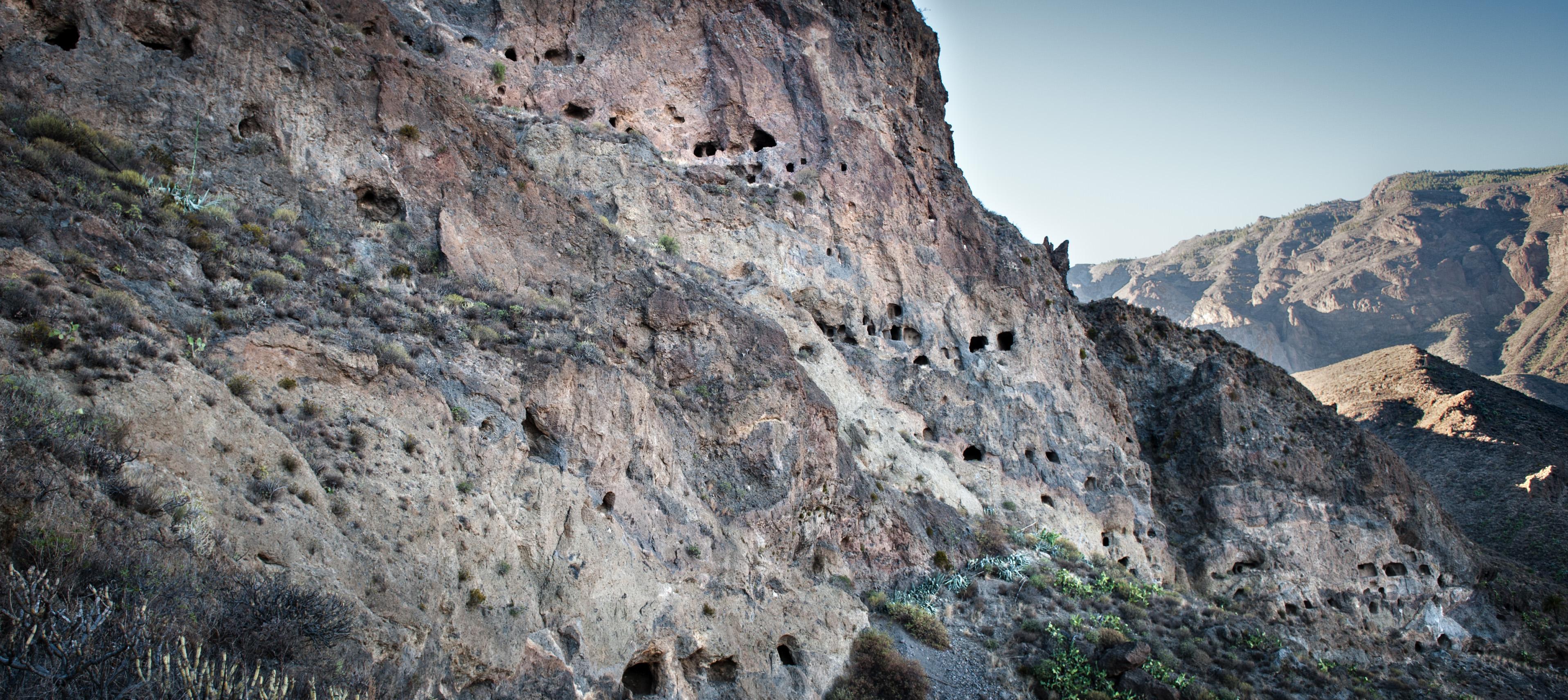 Las migraciones, nuevo ciclo de conferencias en El Museo Canario