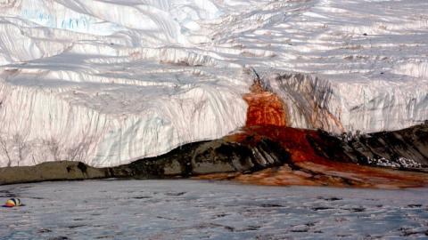 """""""Cataratas de sangre"""" de la Antártida"""