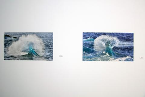"""Exposición """"Miradas al Mar"""" en la ULPGC"""