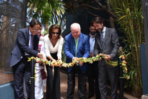 Loro Parque inaugura 'Lion's Kingdom'