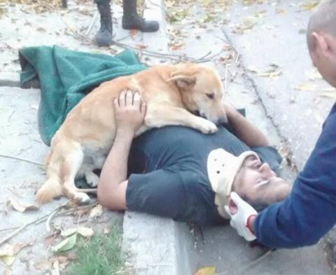 Perro abraza a su dueño accidentado en Argentina