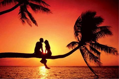 Una pareja sentada en una palmera en el atardecer