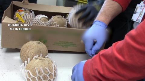 Cocos incautados por la policía