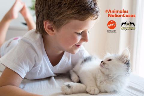 un niño y un gato