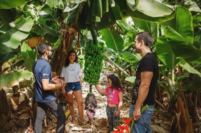 Visita de los ganadores a una explotación de plátanos