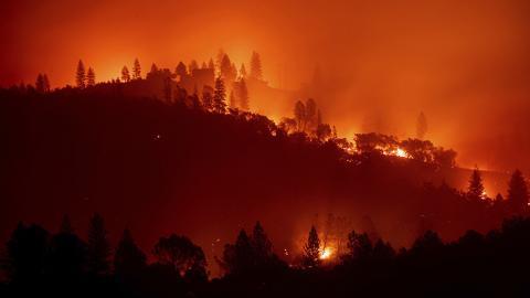 Fuego en un monte