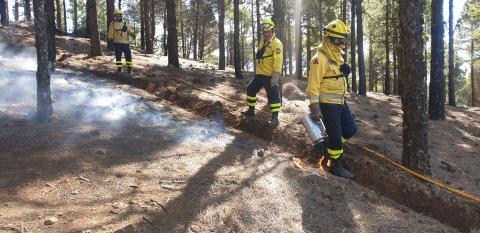 quema prescrita del Cabildo de Gran Canaria en la cumbre