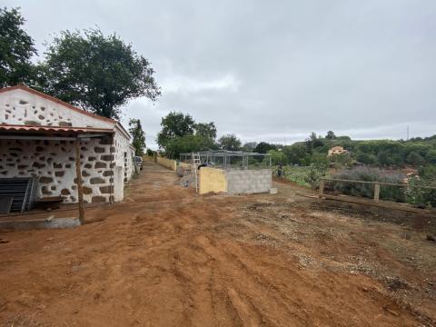 Valleseco prepara los  Campus de Verano