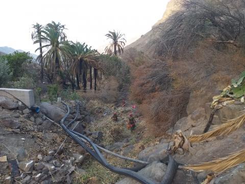 La Aldea limpia sus barrancos para evitar incendios. Gran Canaria
