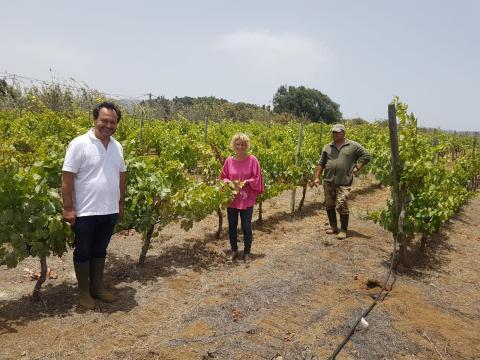 Auri Saavedra recorre La Higuera Mayor dentro de la ronda de visitas a las fincas de Telde
