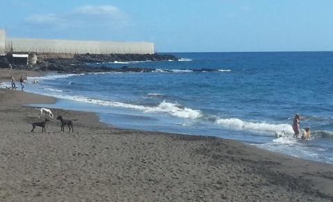 Playa El Confital. Granaddilla de Abona