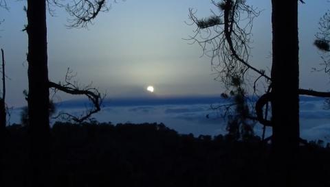 Puesta de sol desde el pinar de Tamadaba. Gran Canaria