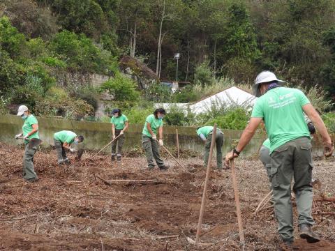 Proyecto Emplea Verde Gran Canaria