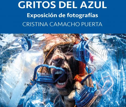 "Exposición ""Gritos del Azul"" de Cristina Camacho en Arucas. Gran Canaria"